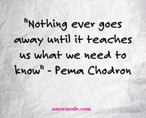 nothing-ever-goes-away-until-it-teaches-us-what-we-need-to-know